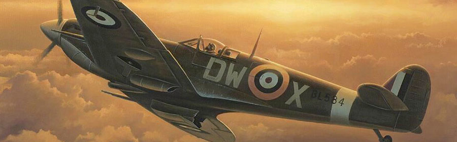 Freedom close detail header aviation art by Neil Hipkiss