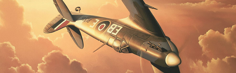 Spitfire mk5 RAF oil painting by neil hipkiss