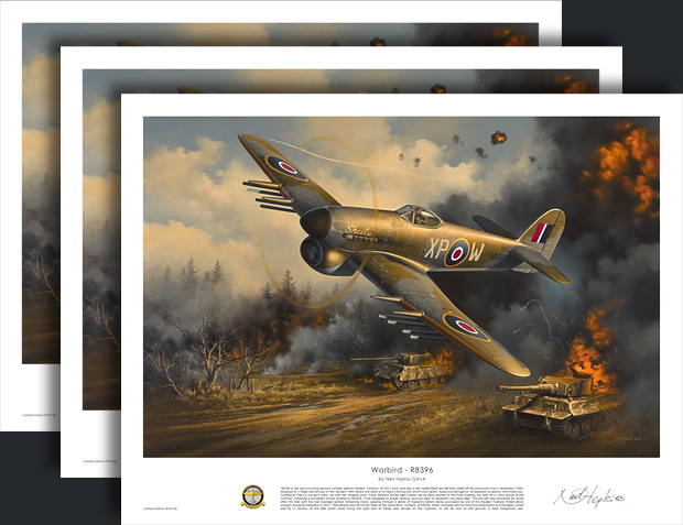 Warbird RB396 prints by Neil Hipkiss