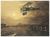 Coming Home - Aviation Art by Neil Hipkiss